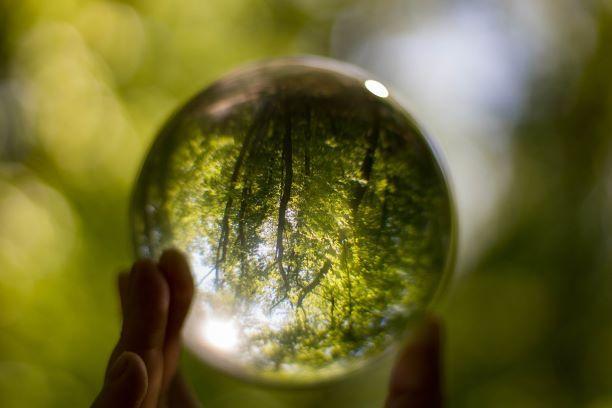 Käsi pitelee kristallipalloa. Koristeellinen.